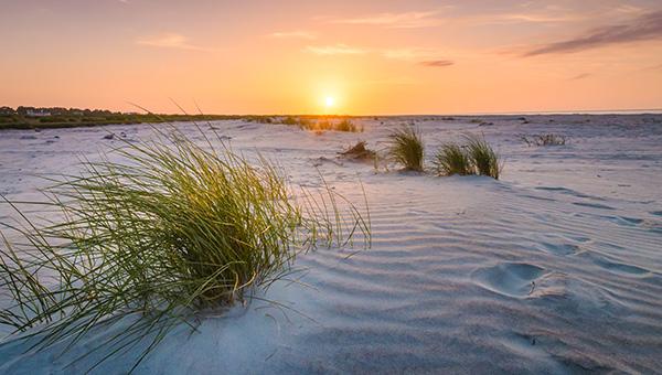 sand dune wide